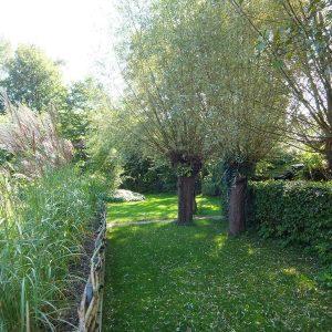 tuin achter